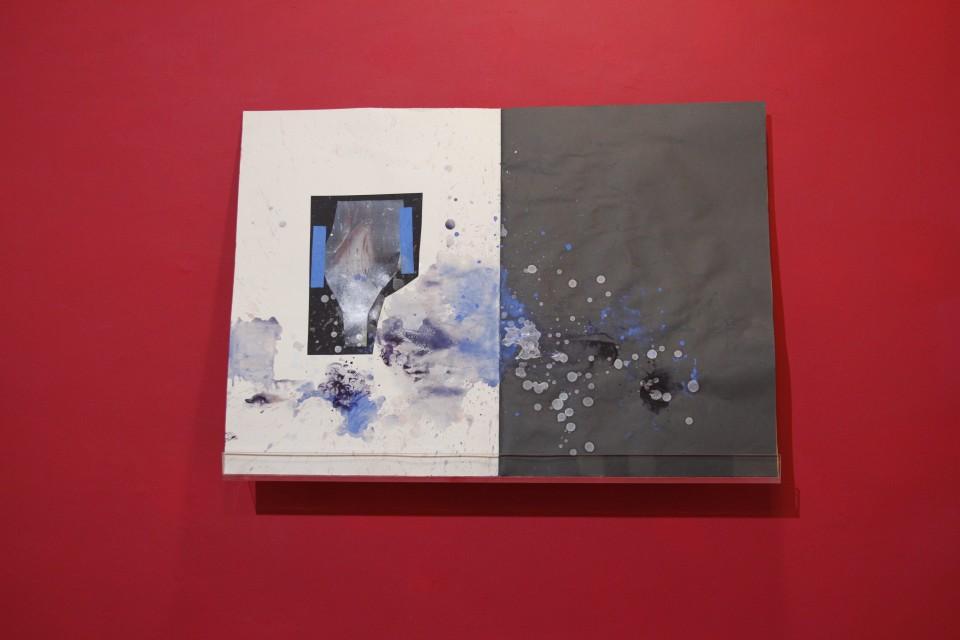 מתוך 'פעולה כפולה', מירית צ'רוינסקי 2016